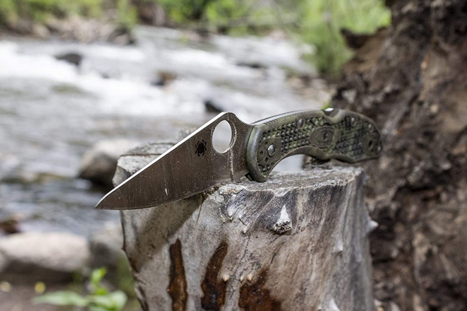 Spyderco Delica Folding Knife